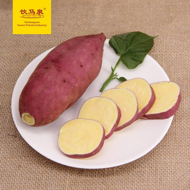 饮马泉新鲜山地红薯山芋生地瓜软糯可口好番薯早餐小香薯10斤包邮